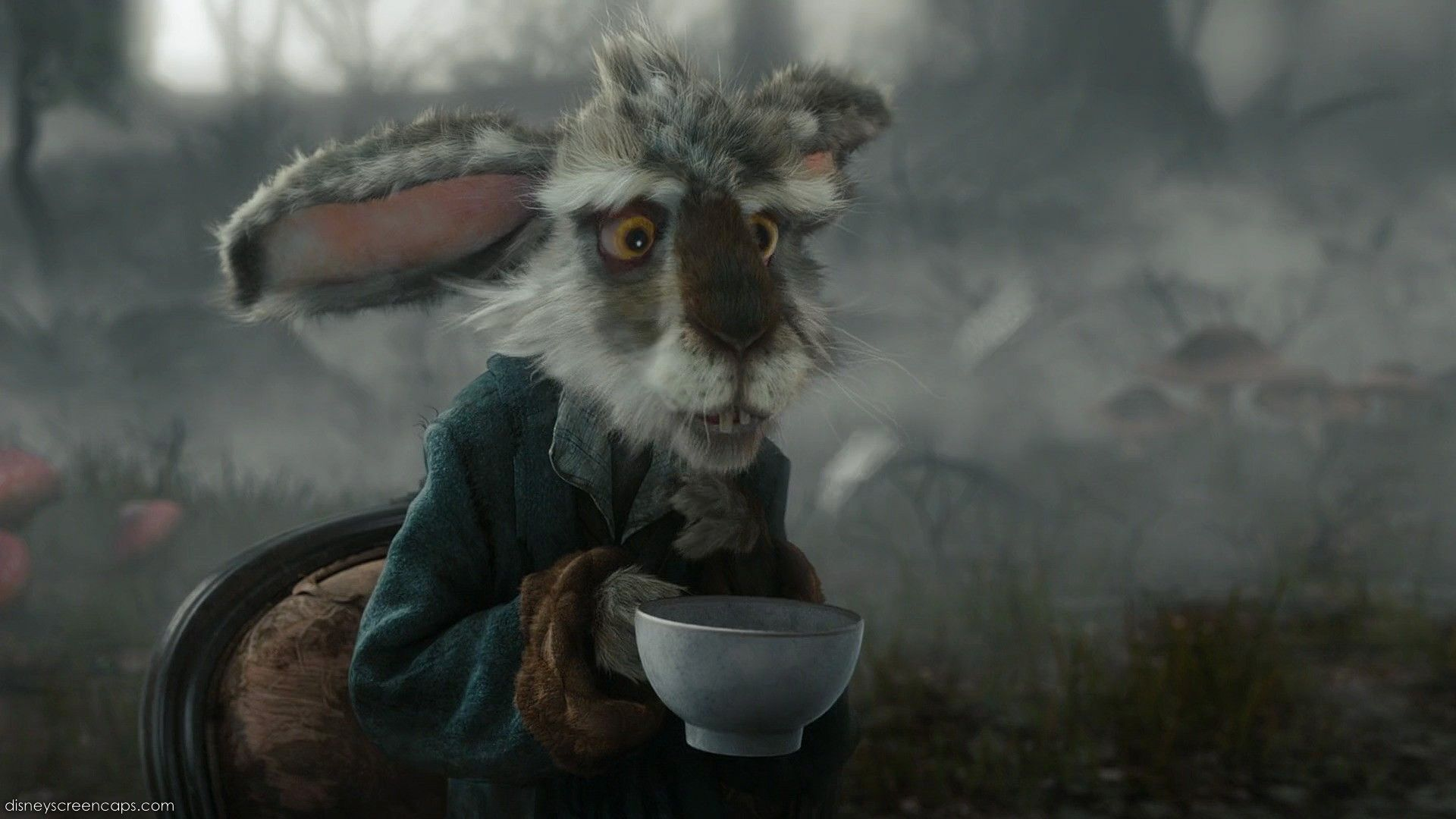 Mad March Hare March Hare 33179588 1920 1080 Jpg 1920 1080