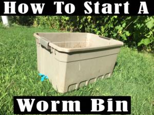 7Savings.com 7savings.com - How to start a Worm bin for ...