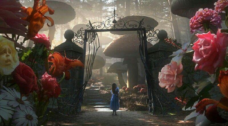 Entrance wonderland
