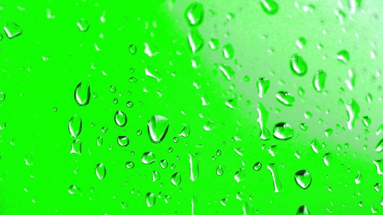 Free Hd Green Screen Water Drops On Glass Greenscreen Green Background Video Rain Drops