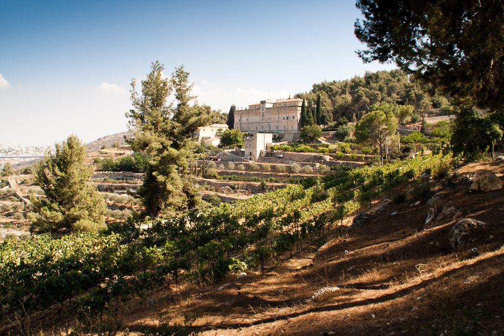 Ad Andria si potrà bere il vino Cremisan. Ecco perché è importante farlo
