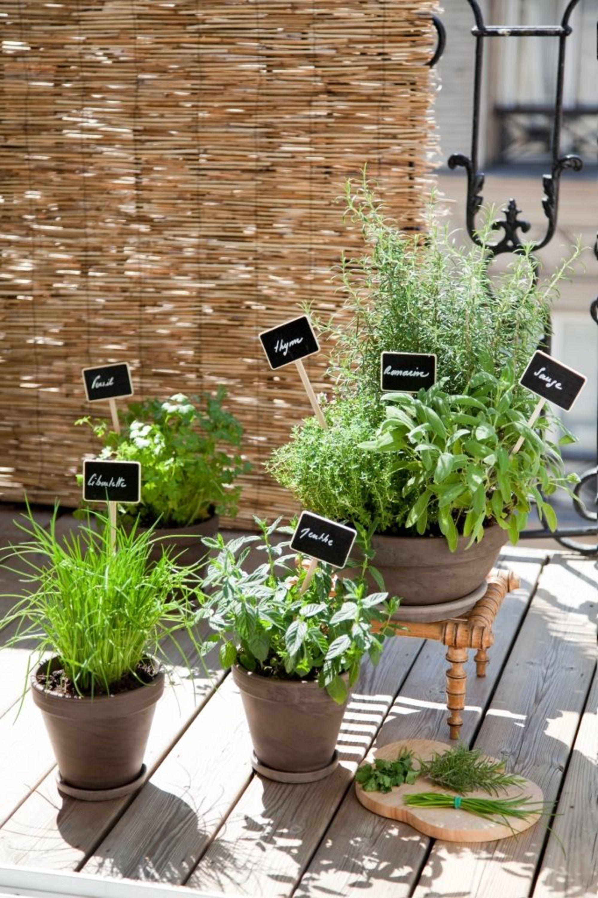 comment planter des plantes aromatiques sur son balcon jardin pinterest huerto huerta. Black Bedroom Furniture Sets. Home Design Ideas