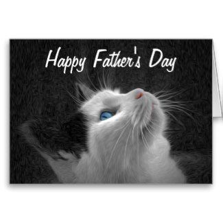 Blue eyed cat photo happy fathers day cards novelty cards blue eyed cat photo happy fathers day cards sciox Gallery