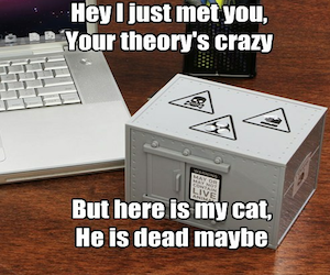 Did Schrodinger Actually Put A Cat In A Box