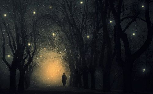 Whose Woods These Are I Think I Know His House Is In The Village Though He Will Not See Me Stopping Here T Watch His With Images Good Night Image