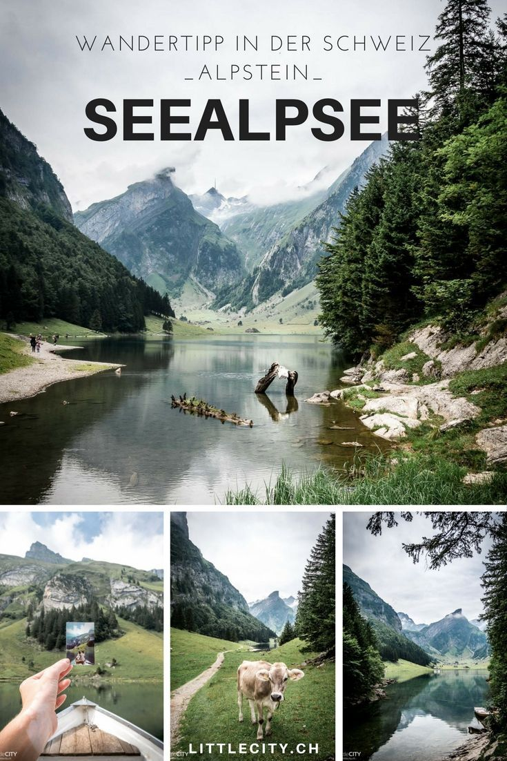 Photo of Seealpsee: hike, arrival & TOP excursion tips (Appenzell | Wasserauen AI)