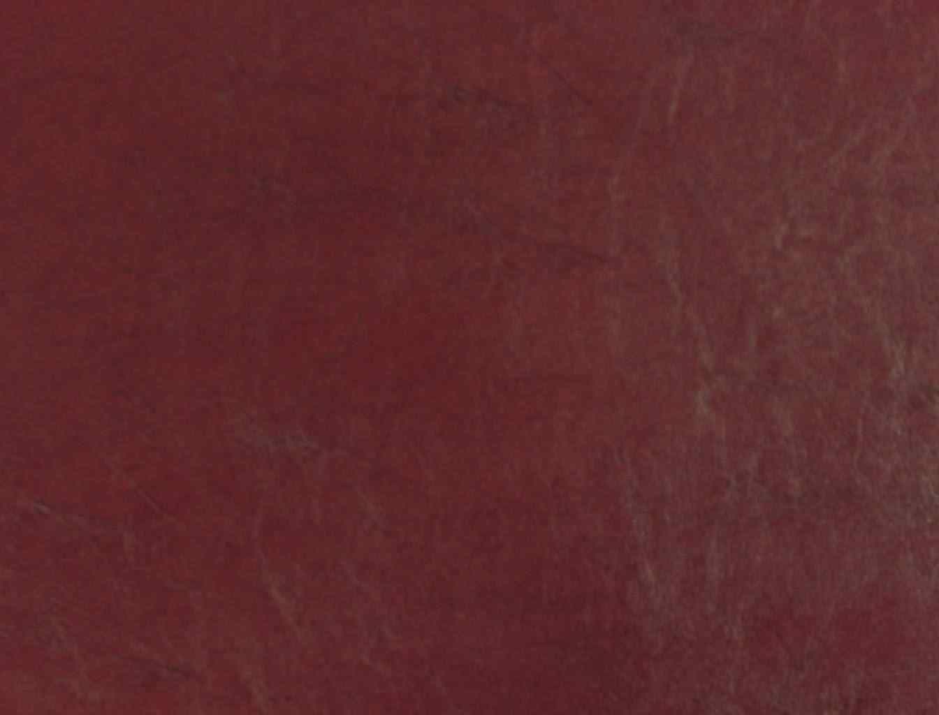 Burgundy Vinyl Upholstery Fabric Waterproof Cordovan Interior Paint Exterior Paint Paint Cleanup