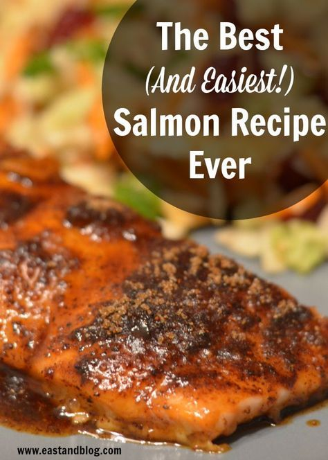The best and easiest salmon recipe ever salmon recipes easy the best and easiest salmon recipe ever forumfinder Gallery