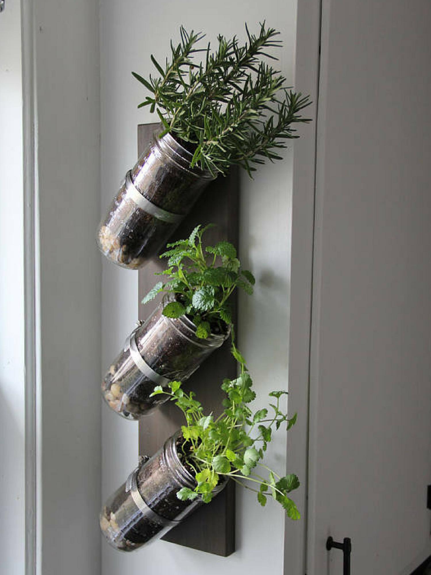 Mason Jar Herb Garden #Masonjar #Masonjarideas #Herbgarden #Garden # Indoorgarden