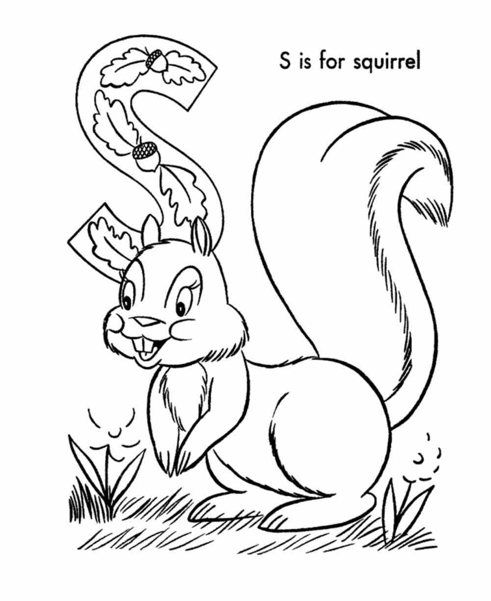 squirrel coloring page squirrel coloring page home flying free printable pages flying squirrel coloring page squirrel - Squirrel Coloring Pages Printable
