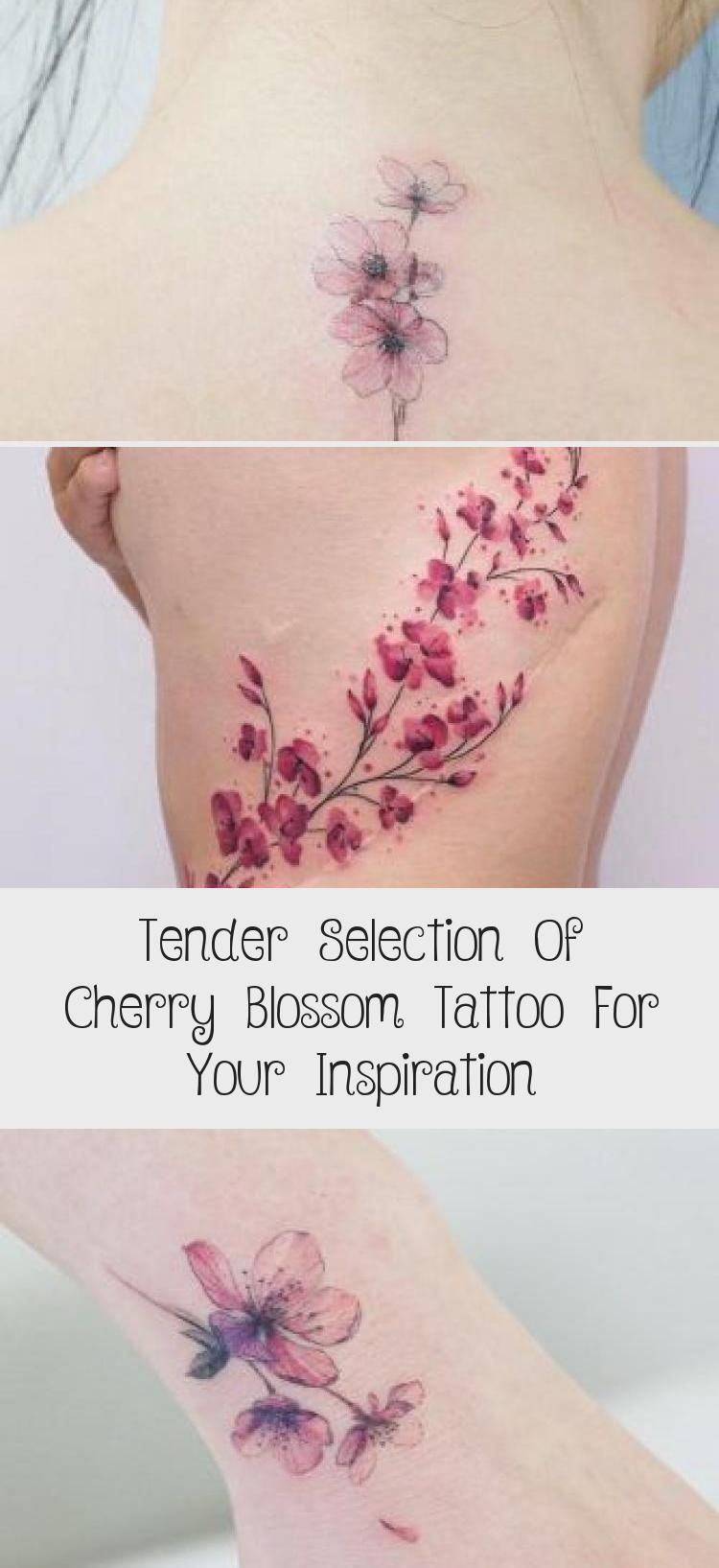 Tender Selection Of Cherry Blossom Tattoo For Your Inspiration Cherry Blossom Tattoo Blossom Tattoo Cherry Blossom Tattoo Meaning