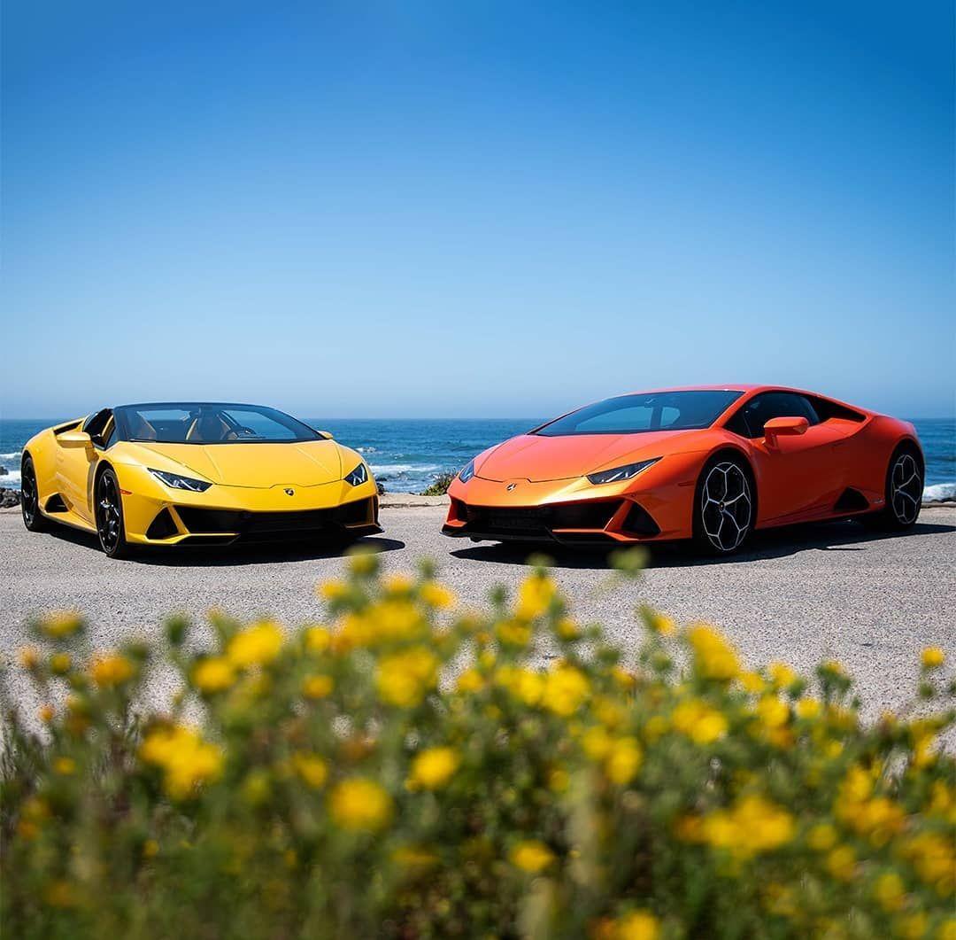 Best Online Business Management Programs Lamborghini Super Cars Sport Cars