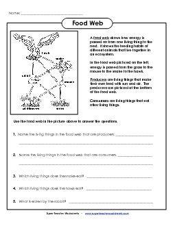 preview 1 science worksheets food web worksheet food chain worksheet science worksheets. Black Bedroom Furniture Sets. Home Design Ideas