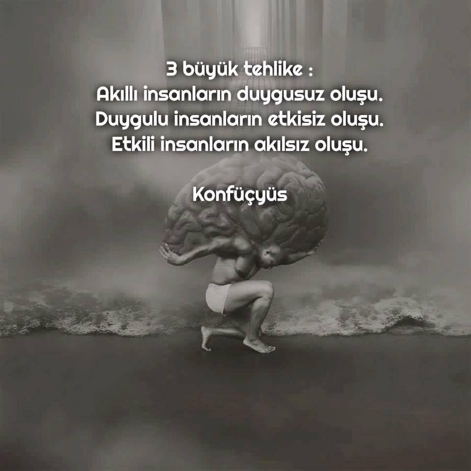 3 Boyuk Təhlukə Agilli Insanlarin Duygusuz Olmasi Duygulu Insanlarin Təsirsiz Olmasi Təsirli Insanlarin Agilsiz Philosophical Quotes Cool Words Wise Quotes