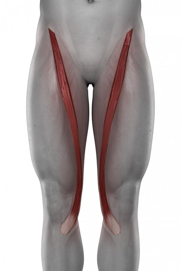 Squats and Hip Dysfunction: 2 Common Problems and How to Fix Them ...