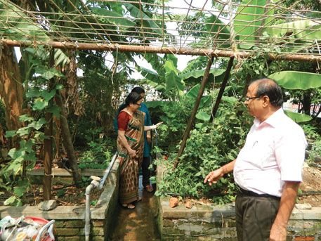 More And More People In Food Deficit Kerala Are Taking Up Terrace Farming To Grow Organic Vegetables And Fruits