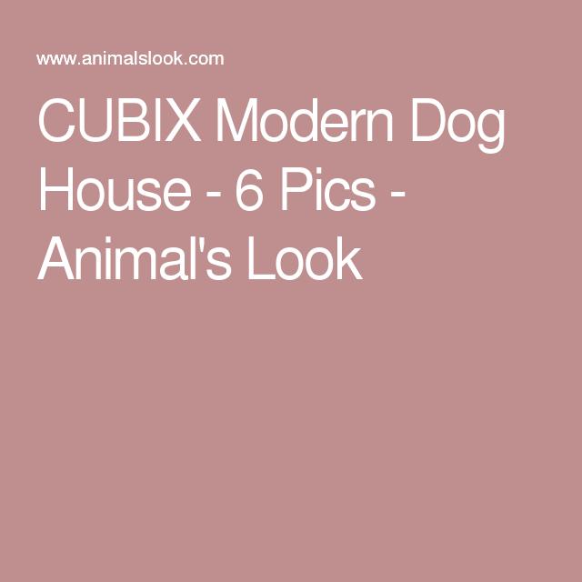 CUBIX Modern Dog House - 6 Pics - Animal's Look
