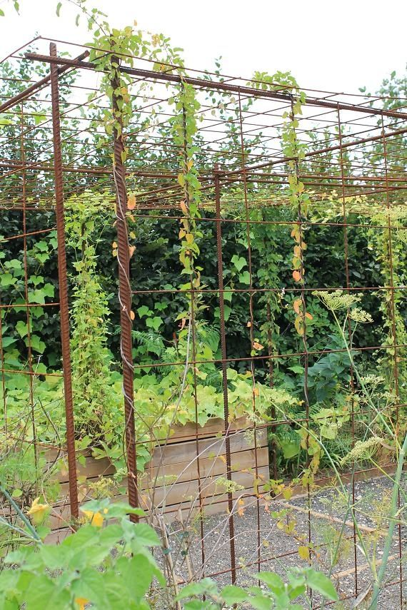 s 39 am nager un espace pour plantes grimpantes avec du fer. Black Bedroom Furniture Sets. Home Design Ideas