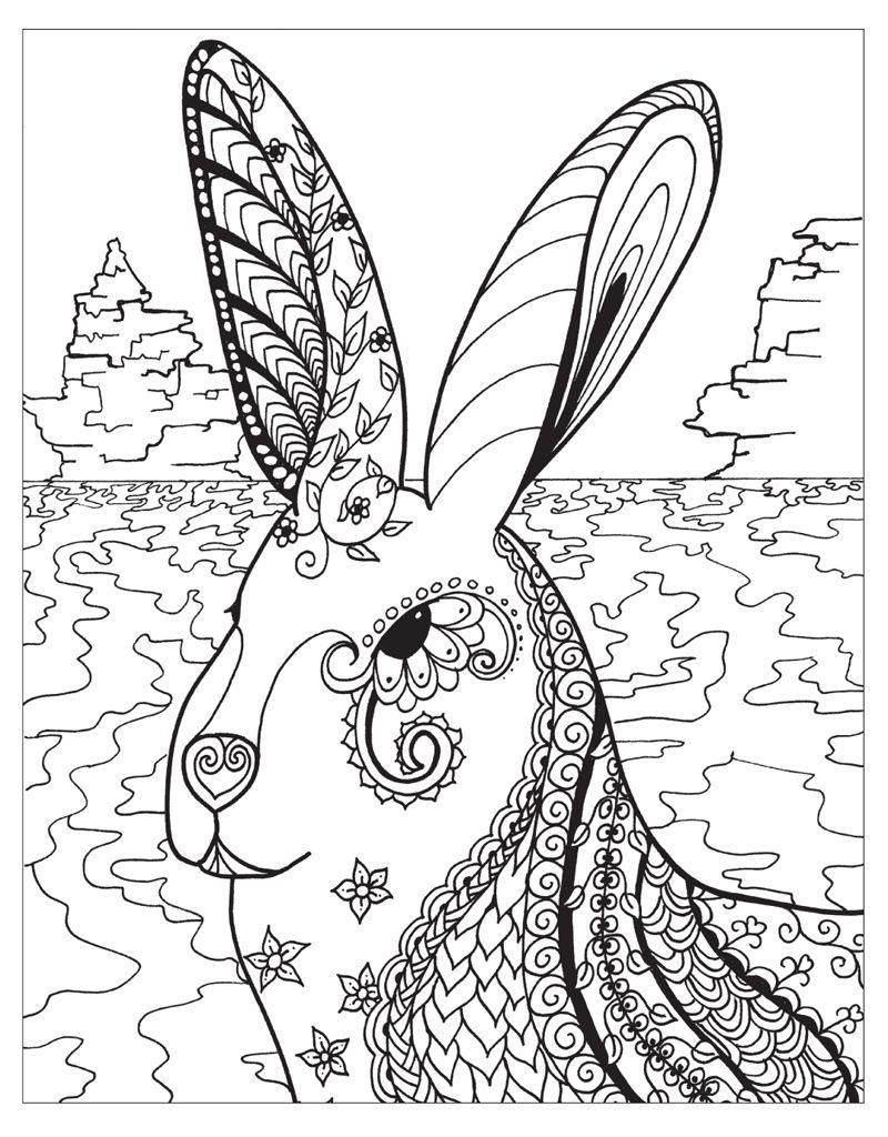 zendoodle coloring winter wonderland coloring book