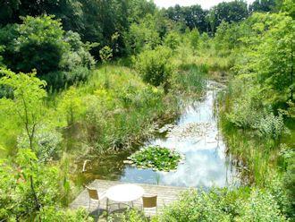 Natuurtuin natuurvijver tuin garden pool water for Natuurvijver aanleggen
