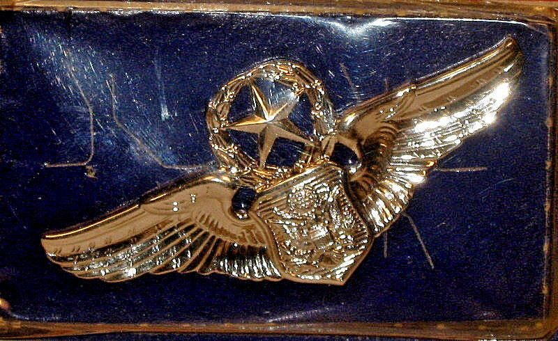 Pin by Marta Schlapp on A Look at Military Badges Badge