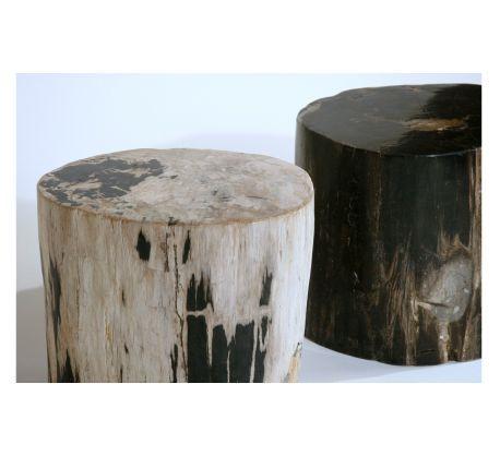 Petrified Wood Stump Side Table... I Need These!! @ Organic Modernism