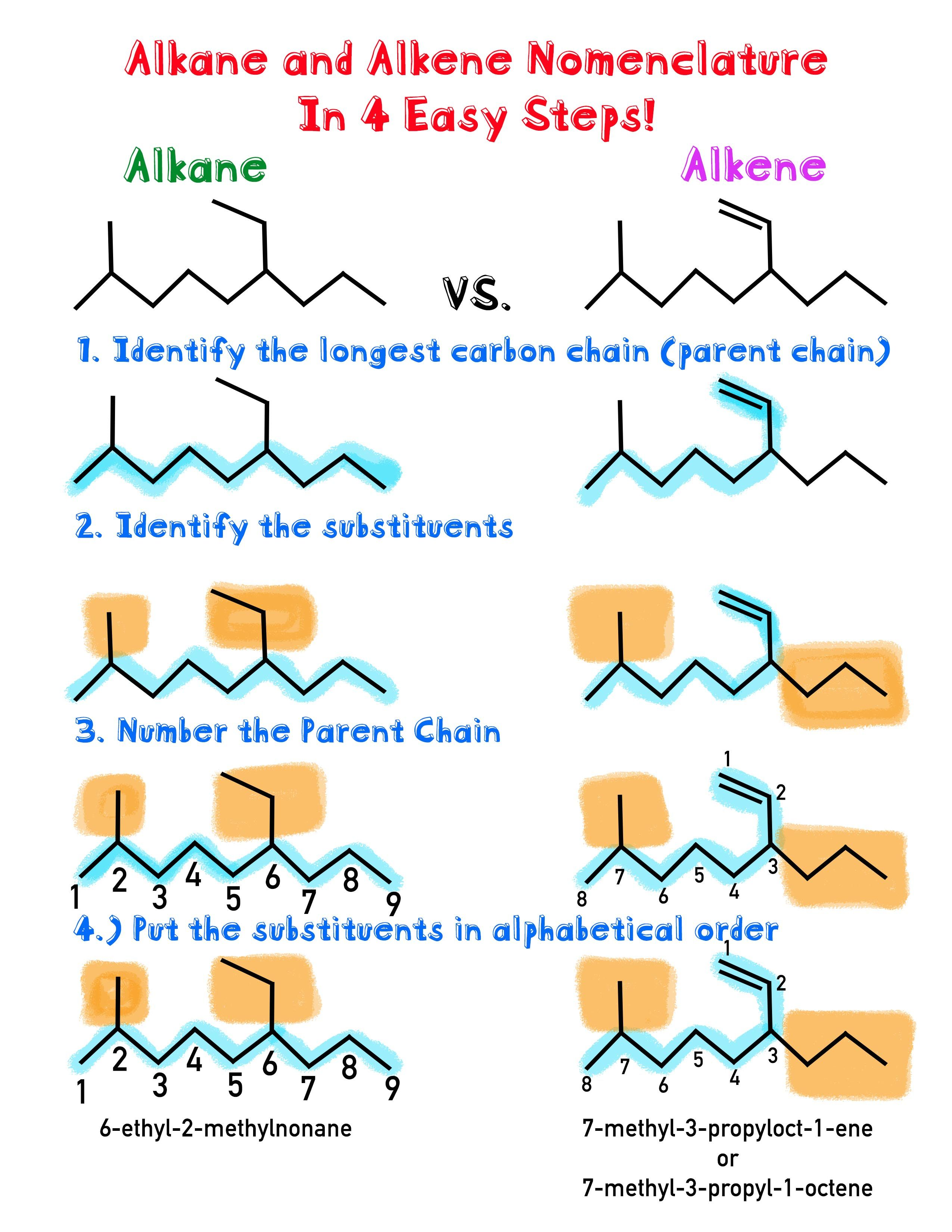 12+ Functional group identification worksheet For Free