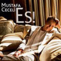 Listen To Bir Yanlis Kac Dogru By Mustafa Ceceli On Applemusic
