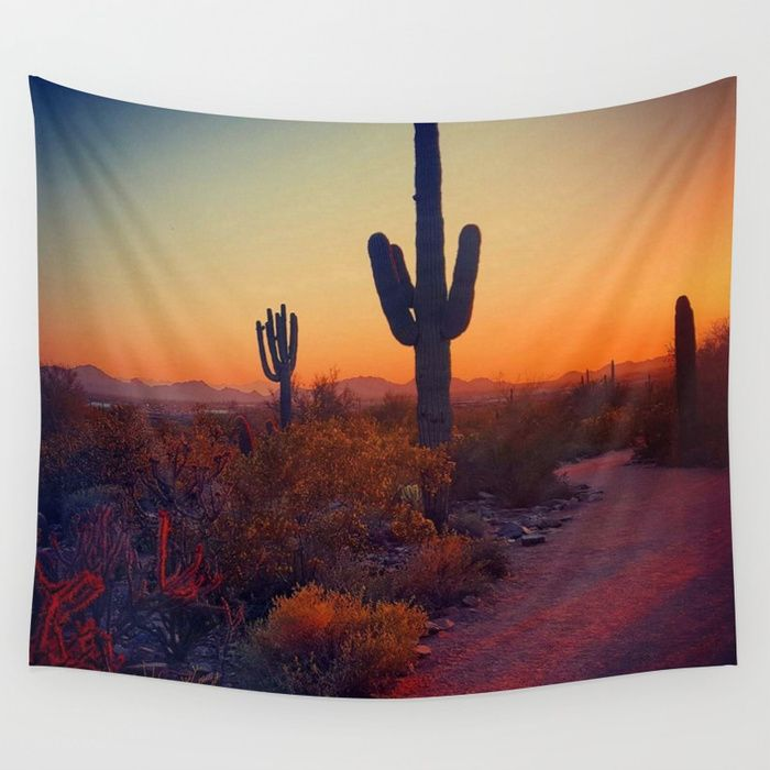 A Cactus Grows In Phoenix Wall Tapestry