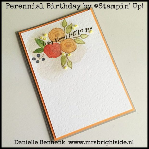 Perennial birthday and french knots embroidery on stage display perennial birthday and french knots embroidery on stage display samples mrs brightside danielle bennenk cards 2 pinterest perennials french bookmarktalkfo Choice Image