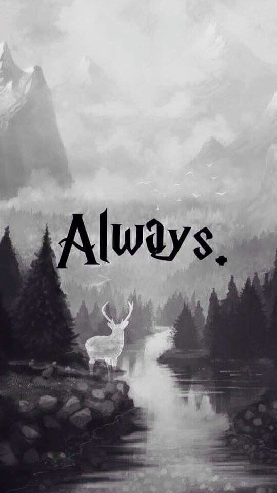 ❤ ❤ ❤️ALWAYS❤ ❤ ❤ Harry Potter | Harry potter ...