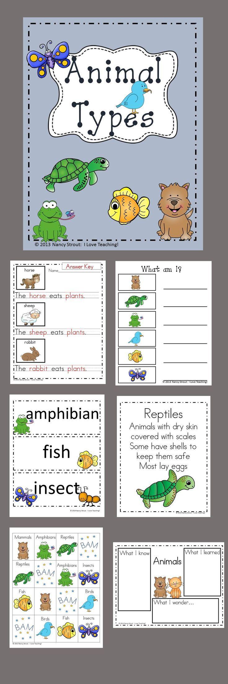 Animals Classifying Animal Types Homeschool Programs Vocabulary Cards Teacher Helper [ 2208 x 736 Pixel ]