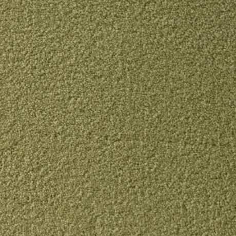 CASBAH, LENTIL Texture Active Family™ Carpet - STAINMASTER®