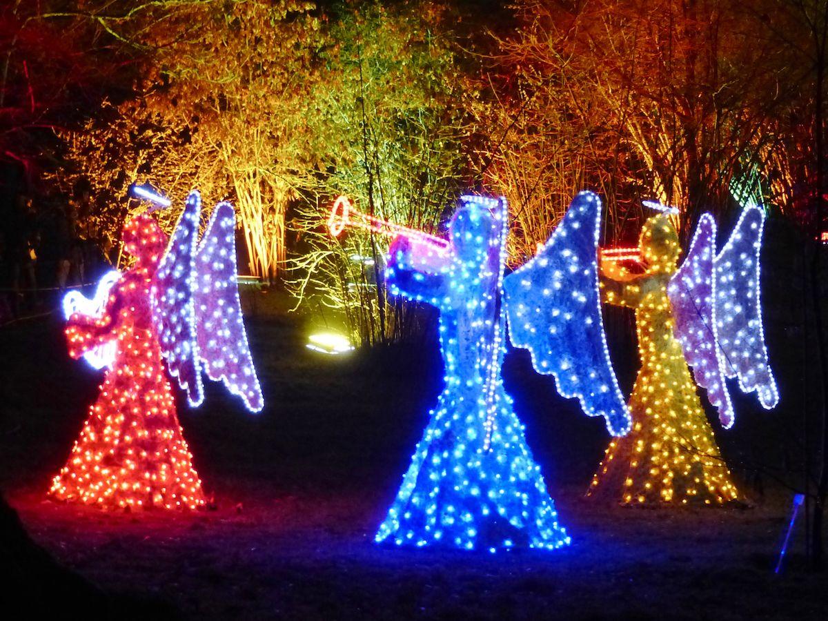 Frohliche Leuchtende Weihnachten Botanischer Garten Berlin Weihnachtsmarkt Berlin Weihnachten
