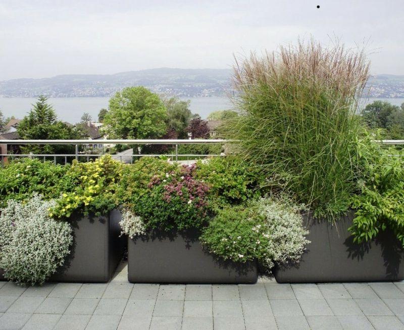 Grosse Pflanzkubel Effektvoll Im Garten In Szene Setzen Pflanzen