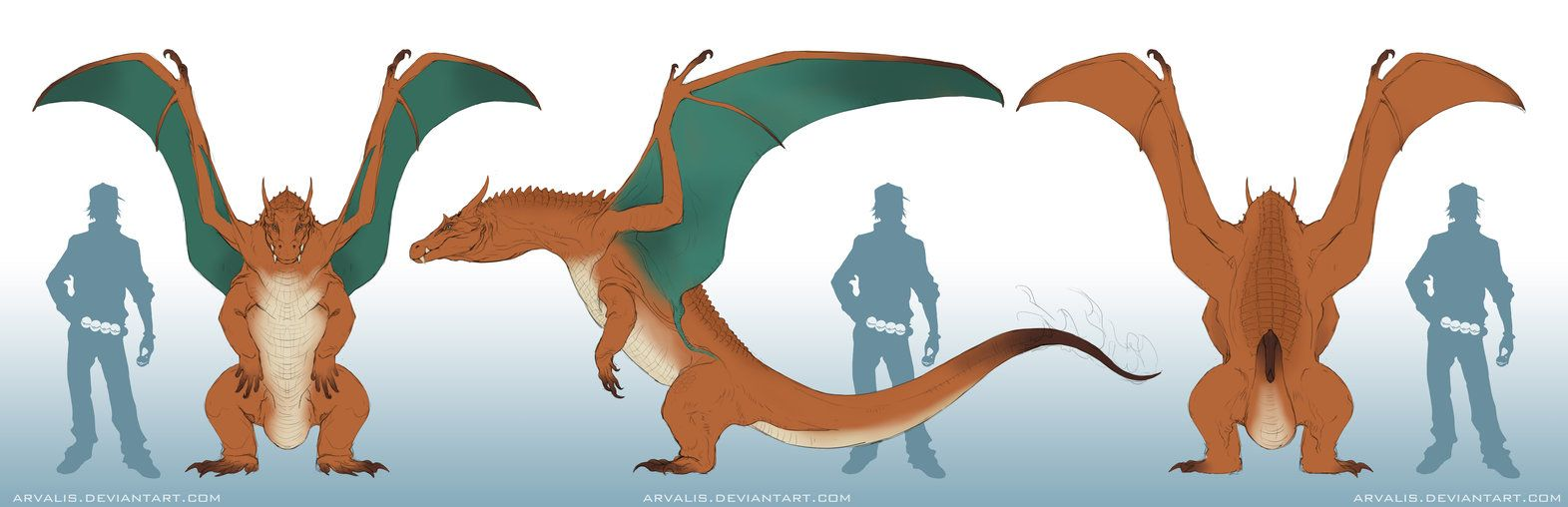 Charizard Orthographic by arvalis on DeviantArt