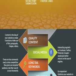 Search Engine Optimization Overview - Beginners Guide including Onpage and Off-page step by steps information. We top-notch Search Engine Optimization