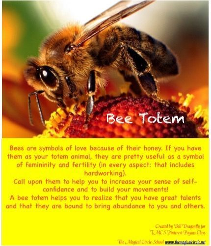Bee Totem Animal Birth Totems Spirit Guides Pinterest Totems