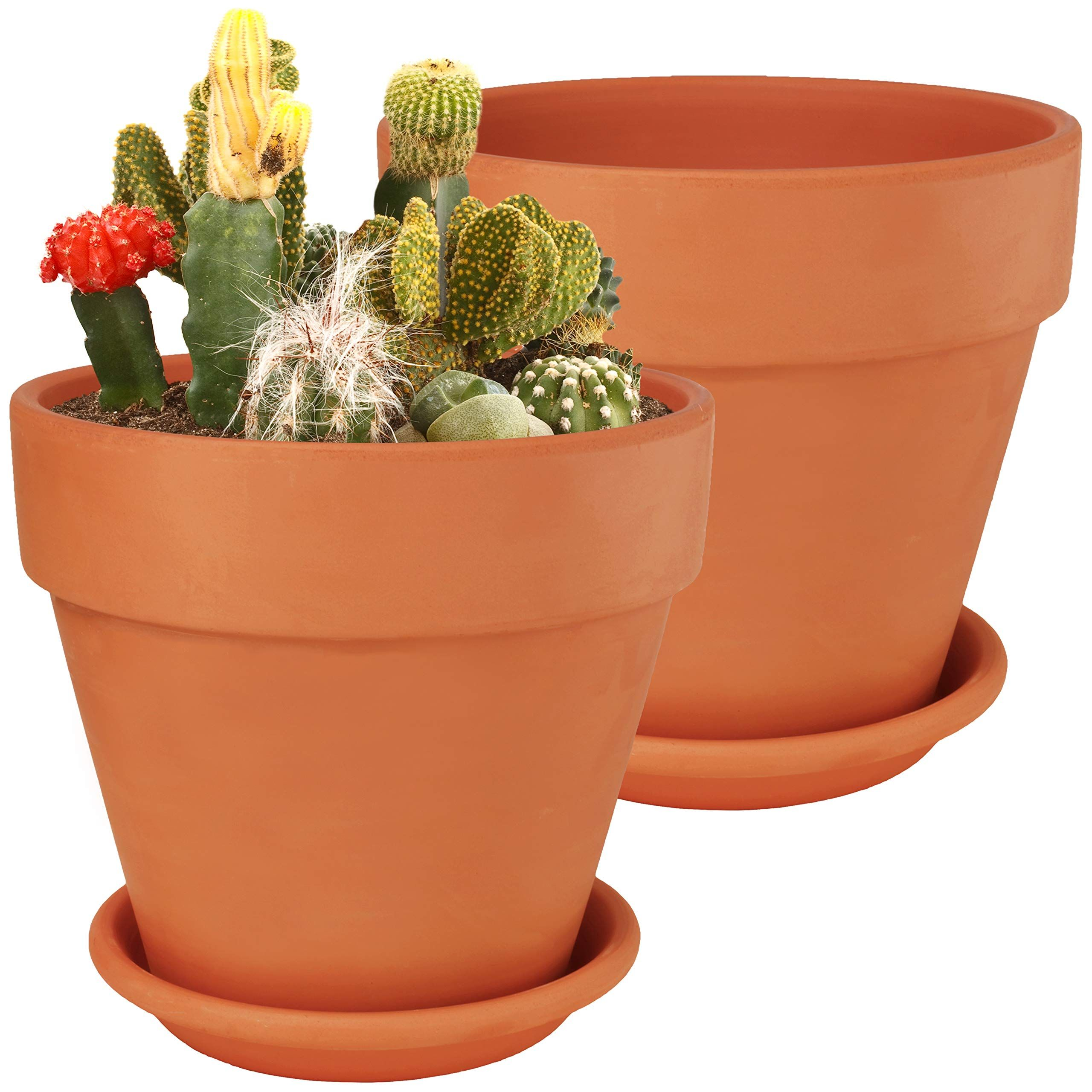8 Inch Large Terra Cotta Pots With Saucer 2 Pack Clay Flower Pots With Saucers Flower Pot Planters For Indoor Outdoor Plant Succulen Clay Flower Pots Flower Pots Large Terracotta Pots