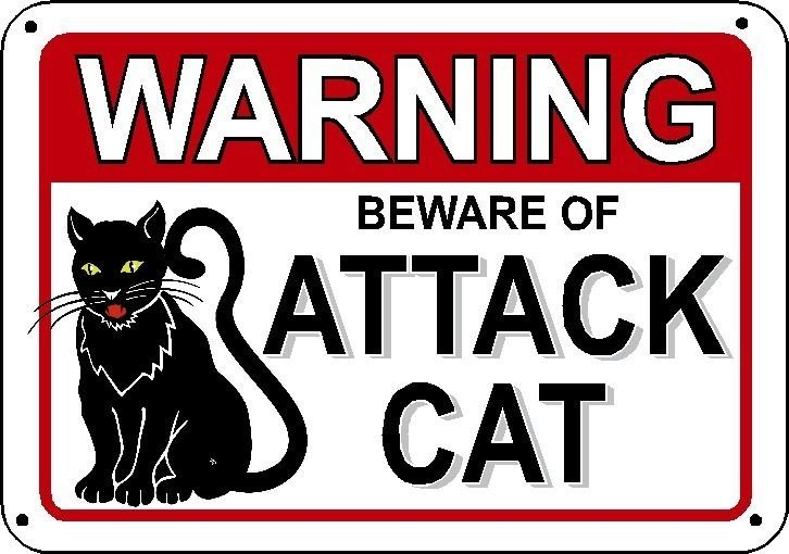 Pin By Delusional Signs On Pet Animal Related Signs We Sell Cat Signs Pet Signs Cats