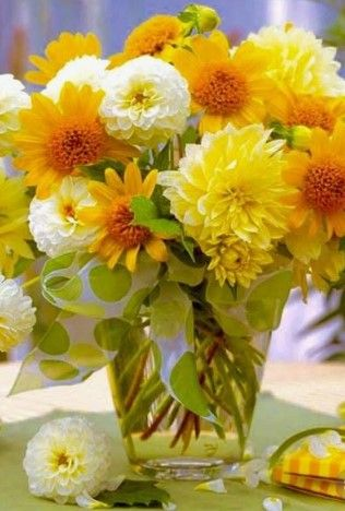 Yellow flowers types pictures photoideas yellowflowers flores yellow flowers types pictures photoideas yellowflowers flores flowers pinterest yellow flowers flowers and flowers garden mightylinksfo