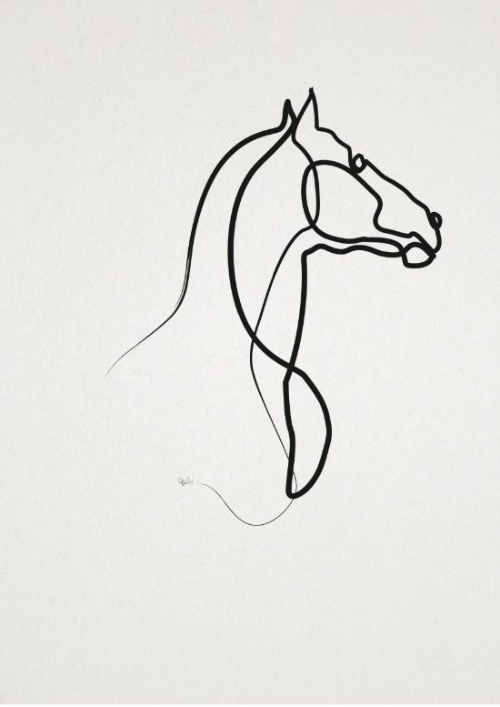 Single Line Artwork : Picasso line drawings horse pixshark images