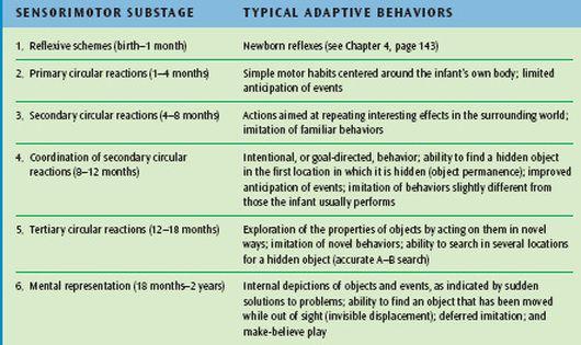 Piaget Sensori Motor Stage Of Infant Development Chart Cognitive Child Baby Essay