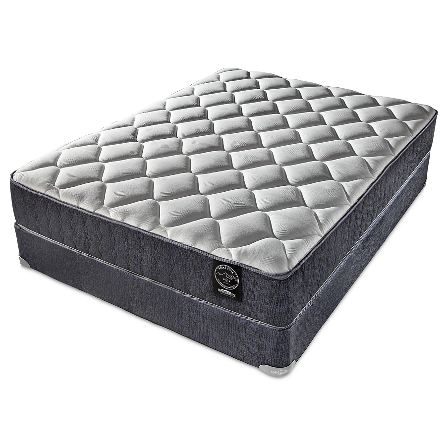 buena vistaa plush mattress mattress and plush