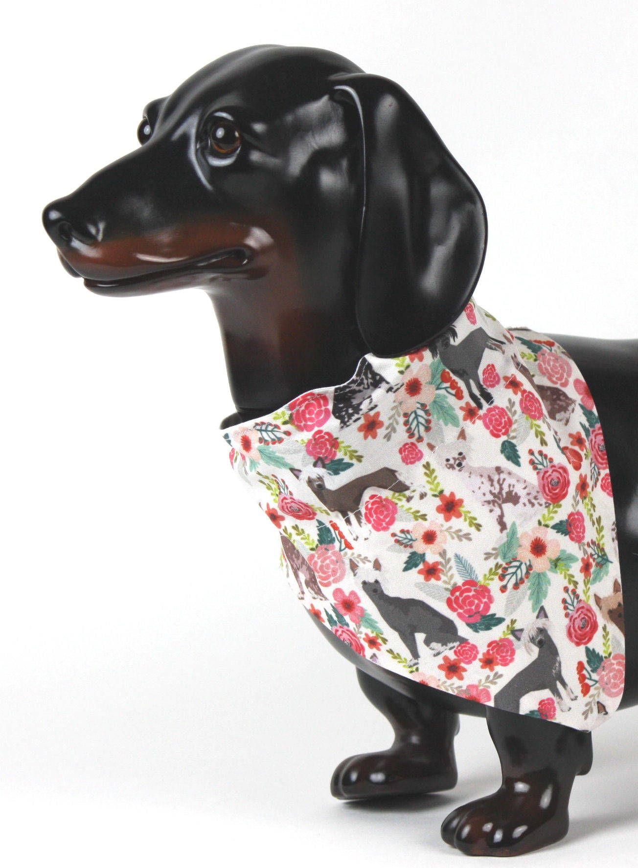 Chinese crested dog bandana no tie dog bandana dog collar
