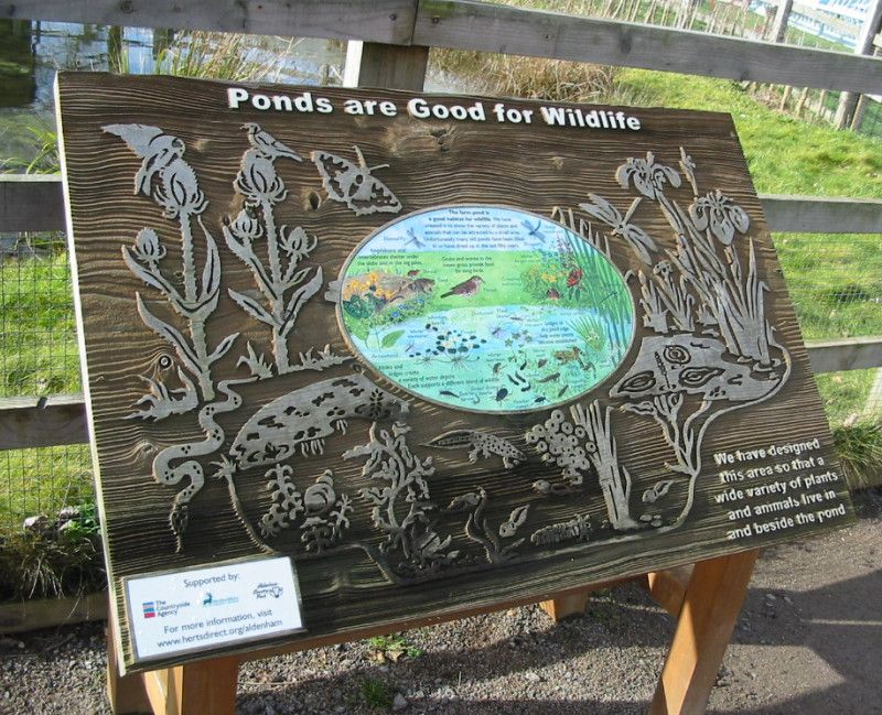interpretation panel - Google Search