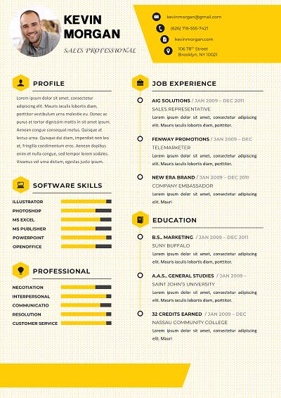 Brisling Chronological resume template, Chronological
