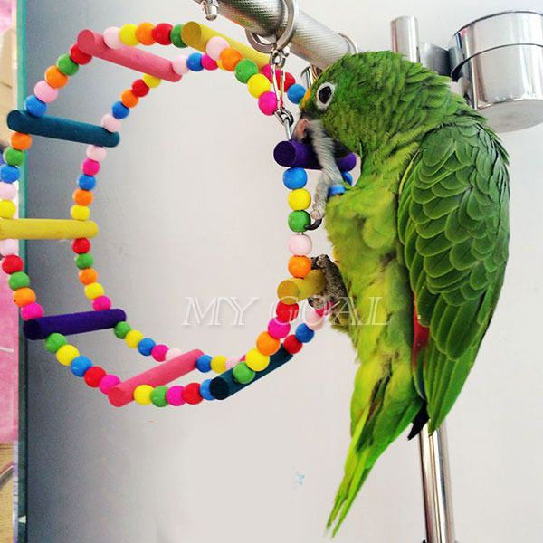 Parrot Toy Hanging Ferris Wheel Arch Swing Cage Bird