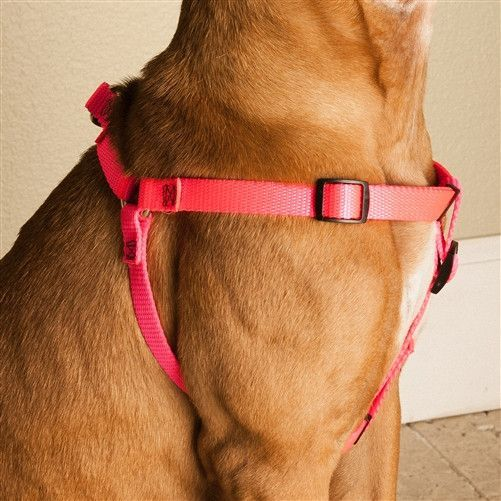 Majestic Pet Products 9in - 15in Step In Harness Pink, Sml 10 - 45