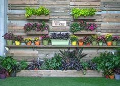 """Comparte un lugar mágico y lleno de emotivos recuerdos construyendo un jardín al estilo del """"Pequeño Veracruz"""". Tú también puedes darle un sentido especial a tu hogar."""
